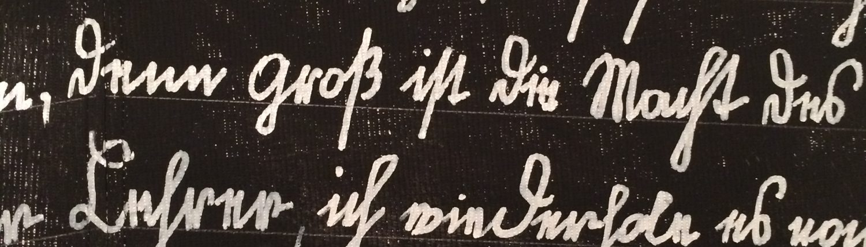 F. X. Gruber, Dem Schicksal zum Trotz, © Sigrid Wurzinger
